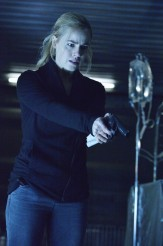 12-Monkeys-Amanda-Schull-163x246